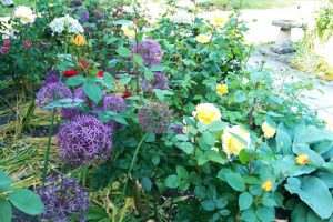 salisbury_christian_almshouse_flowers1