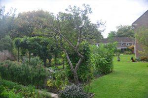 st_nicholas-hospital_garden
